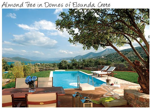Almond Tree is a holiday villa on the resort of Domes of Elounda, Crete. Almond Tree sleeps 4 people