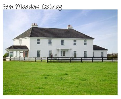 Large holiday cottages in Galway, Fern Meadow sleeps 22 people